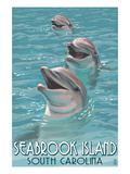 Seabrook Island  South Carolina - Dolphins