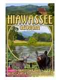 Hiawassee  Georgia - Montage Scenes