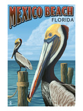 Mexico Beach  Florida - Brown Pelicans