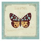 Parisian Butterfly  I