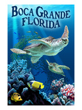 Boca Grande  Florida - Sea Turtle Fishing
