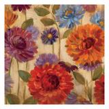 Rainbow Dahlias Crop II