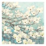 Dogwood Blossoms II Giclée premium par James Wiens