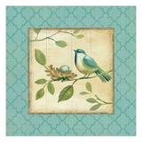 Birds Home II