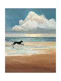 Marée basse Reproduction d'art par Avery Tillmon