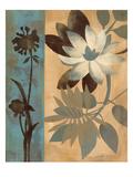 Romantic Magnolias III