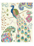 Peacock Fantasy III