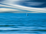 Wind Surfing Papier Photo par Josh Adamski