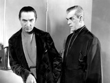 The Black Cat  Bela Lugosi  Boris Karloff  1934