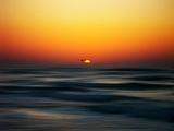 Bird at Sunset Papier Photo par Josh Adamski