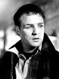 On the Waterfront  Marlon Brando  1954