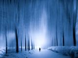 Cold Walk