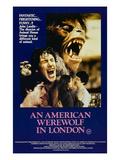 An American Werewolf In London  David Naughton  Jenny Agutter  David Naughton  1981