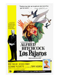 The Birds  (AKA Los Pajaros)  Alfred Hitchcock  Tippi Hedren  1963