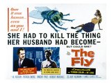 The Fly  Vincent Price  Patricia Owens  1958