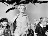 The Birds  Tippi Hedren  1963