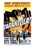 Tarantula  John Agar  Mara Corday  1955