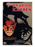 The Black Cat  (AKA Den Svarta Katten)  L-R: Boris Karloff  Bela Lugosi  1934
