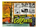 The Deadly Mantis  Bottom Right  From Left: Alix Talton  Craig Stevens  1957