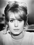 Tales of Paris  Catherine Deneuve  1962