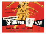 The Incredible Shrinking Man  Grant Williams  1957