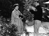 All That Heaven Allows  Jane Wyman  Rock Hudson  1955