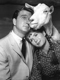 Tammy And The Bachelor  Leslie Nielsen  Debbie Reynolds  1957