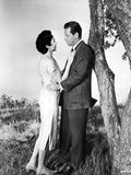 Love Is A Many-Splendored Thing  Jennifer Jones  William Holden  1955