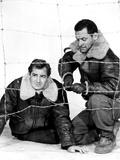 Stalag 17  Don Taylor  William Holden  1953