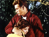 Rebel Without A Cause  Natalie Wood  James Dean  1955