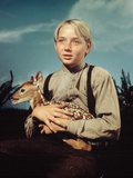 The Yearling  Claude Jarman  Jr  1946