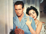 Cat On A Hot Tin Roof  Paul Newman  Elizabeth Taylor  1958