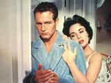 Cat On A Hot Tin Roof  Paul Newman  Elizabeth Taylor  1958