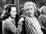 The Snake Pit  Olivia De Havilland  Celeste Holm  1948