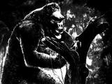 King Kong  King Kong  Fay Wray  1933