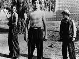 Los Olvidados  Roberto Cobo  Alfonso Mejia  1950