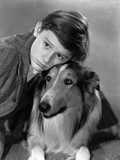 Lassie Come Home  Roddy McDowall  Lassie  1943