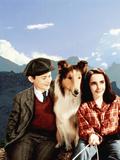 Lassie Come Home  Roddy McDowall  Lassie  Elizabeth Taylor  1943