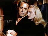 Sweet Bird Of Youth  Paul Newman  Shirley Knight  1962