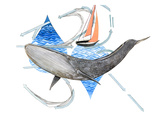 Migrating Mural Concept: North Pacific Blue Whale