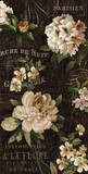 Fleurs Antique I