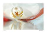 Floral Elements 9