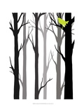 Forest Silhouette II