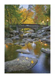 Ashland Creek In Fall
