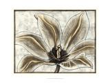 Fresco Flowerhead III