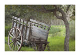 Historic Farm Cart