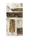 Birch Bark Abstract I