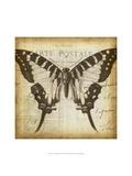 Carte Postale Butterfly I