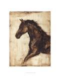 Weathered Equestrian I