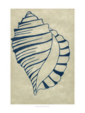 Indigo Shell V